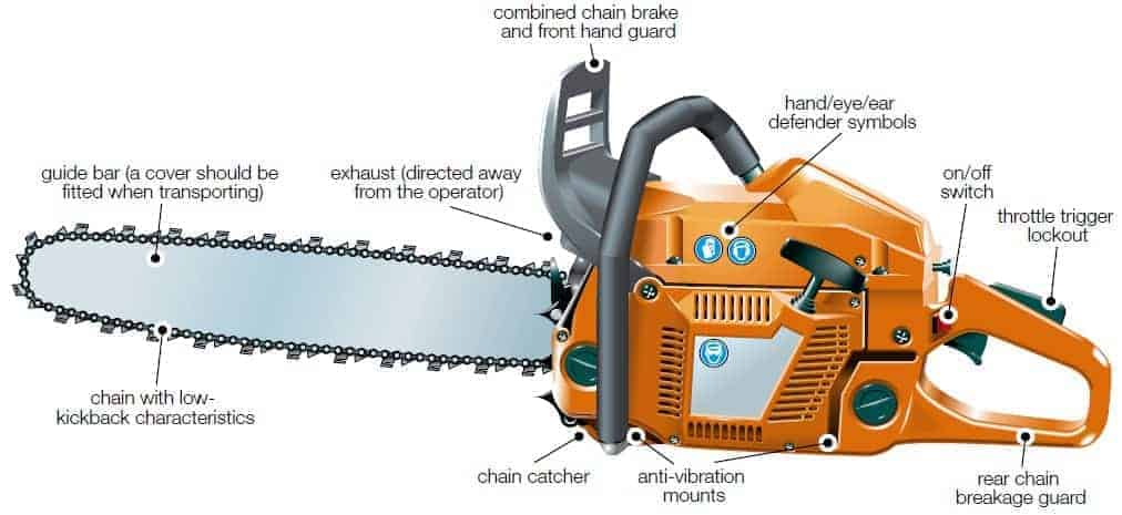 chainsaw anatomy