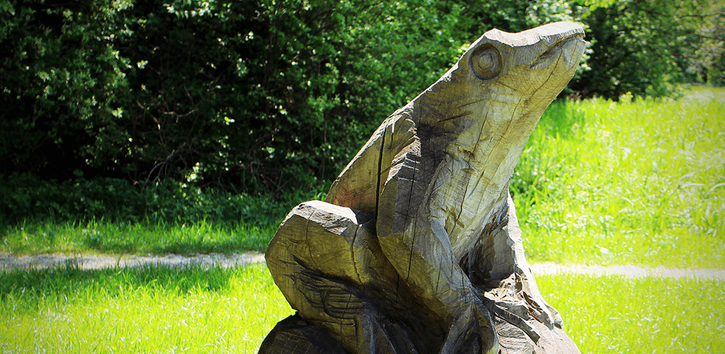 Where to Get Chainsaw Carving Patterns